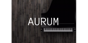 Aurum (24)
