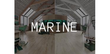 Marine (6)