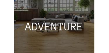 Adventure (9)